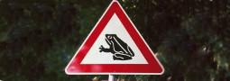 Buchbesprechung: Baumaterialien für den Amphibienschutz an Straßen