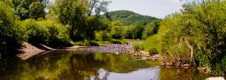 Lebensräume und Verbreitung der Würfelnatter