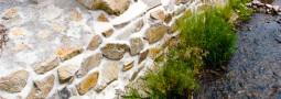 Gefährdung und Schutz der Würfelnatter