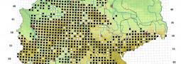 Herpetofaunistische Artenkartierungen in Deutschland – Sie können mithelfen!