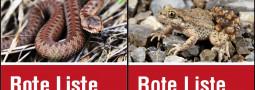 Rote Liste der Reptilien & Amphibien Deutschlands 2020