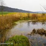 Stillgewässer in der Kulturlandschaft, Foto: R. Podloucky