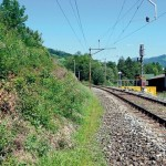 Lebensraum der Schlingnatter: Bahndämme und trockene Böschungen mit einem lichten Bewuchs