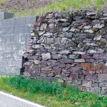 Lebensraumverlust durch Umbau von Trockenmauern
