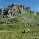 """Gebiet der Erstentdeckung der """"Concolor-Aspisvipern in den Alpen Frankreichs"""