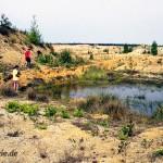 Laichgewässer und Landlebensraum