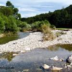 Hochwasserdynamik schafft gute Lebensräume