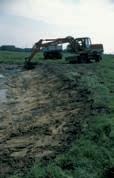 Beispiel einer Laichgewässersanierung