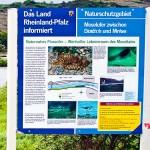 Informationstafel zum Würfelnatterprojekt