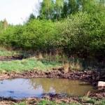 Neuangelegtes Kleingewässer