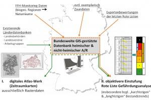 Datenfluss zur Erstellung der länderübergreifenden Datenbank (zur Vergrößerung anklicken)