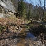 Lebensraum der Unke in einem Steinbruch in der Schweiz