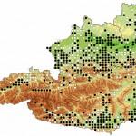 Verbreitung der Gelbbauchunke in Österreich; Weiße Punkte: Nachweise bis 1990; schwarze Punkte: Nachweise ab 1990 (Quelle: Herpetofaunistische Datenbank, Naturhistorisches Museum Wien)