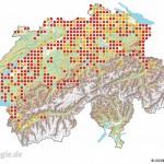 Verbreitung der Gelbbauchunke in der Schweiz auf der Basis von 25 km2-Quadranten. Rote Punkte: Nachweise ab 2005, gelbe Punkte: Nachweise bis 2004 (Quelle: karch, Schweiz)