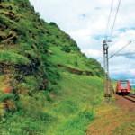Lebensraum der Westlichen Smaragdeidechse an der unteren Mosel mit der Bahnstrecke als Vernetzungskorridor Foto: U. Schulte