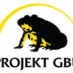 Logo Projekt Gelbbauchunke
