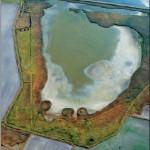 """Das Untersuchungsgebiet """"Sulsdorfer Wiek"""" im Süden der Insel Fehmarn Foto: Grell 2009"""