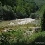 Lebensraum von Rana graeca im Canyon des Flusses Rakitnica, Sarajevski kanton, 08.08.2012, Foto M. Radaković.