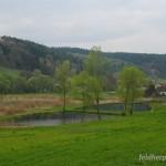 Vom Menschen geschaffener Lebensraum von Bufo bufo, Karpfenteiche am Ortsrand von Erdmannsdorf, Saale-Holzland-Kreis, Freistaat Thüringen, 17.04.2011, Foto A.+Ch. Nöllert.