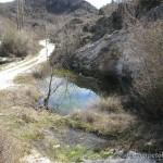 Lebensraum Lissotriton vulgaris tomasinii, Velika Osječenica bei Vilusi, Opština Nikšić, 14.03.2008, Foto G. Džukić.