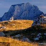 Lebensraum von Dinarolacerta mosorensis, Durmitor Massiv (Dinariden), Opština Plužine, 24.09.2010, Foto B. Trapp (www.bennytrapp.de).