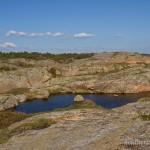 Lebensraum und Fortpflanzungsgewässer Bufo bufo - Felsweiher auf der Insel Lyngør, Fylke Aust-Agder, 14.09.2014, Foto H. Bringsøe.