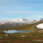 Lebensraum und Fortpflanzungsgewässer von Rana temporaria temporaria, Tundra-Weiher auf 485 m ü. NN, ca. 69° 37 nördlicher Breite, in der Nähe des nördlichen Arealrandes der Art, Fylke Troms, 29.06.2008, Foto F. Broms.