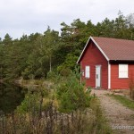 Lebensraum von Coronella austriaca austriaca in der Umgebung von Kristiansand, an der Südküste Norwegens, Fylke Vest-Agder, 12.09.2014, Foto H. Bringsøe.