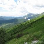 Lebensraum von Vipera aspis aspis, Vipera ammodytes ammodytes und Vipera berus berus bei Kobarid (Julische Alpen), občina Kobarid, 12.06.2013, Foto J. Hill.