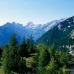 Lebensraum von Vipera berus berus, Soča, Soča-Tal (Julische Alpen), občina Bovec, 16.08.2000, Foto A.+Ch. Nöllert.