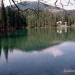 Fortpflanzungsgewässer und Lebensraum Bufo bufo, bei Synevyrs'ka Polyana, Chustskyj rajon, Sakarpatska oblast, 09.05.1996, Foto K. Grossenbacher.