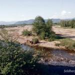 Lebensraum Bufo viridis complex (viridis), Nyzhnje Selyshche, Chustskyj rajon, Sakarpatska oblast, 07.05.1996, Foto K. Grossenbacher.