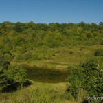 Lebensraum Lacerta viridis viridis, sowie Bombina variegata variegata und Bufo bufo bufo, Aggtelek, Aggtelek Nationalpark, Komitat Borsod-Abaúj-Zemlén, 10.09.2012, Foto A.+Ch. Nöllert.