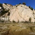 Lebensraum Discoglossus sardus, Sardegna, 08.03.2009, Foto: B. Trapp (www.bennytrapp.de).