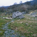 Lebensraum Bombina pachypus, Umgebung Opi, Provincia dell'Aquila, Regione Abruzzo, 20.04.2003, Foto: A.+Ch. Nöllert.