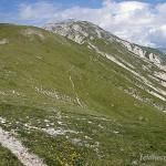 Lebensraum Vipera ursinii ursinii, Campo Imperatore (Parco Nazionale del Gran Sasso e Monti della Laga), nordöstlich Assergi, Provincia dell'Aquila, Regione Abruzzo, Juni 1995, Foto: J. Vetter.