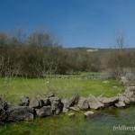 Lebensraum Bufo bufo, Hyla arborea und Natrix natrix persa, Umgebung Wasserspeicher Ponikve, Potok Krk, Primorsko-goranska županija, 06.04.2009, Foto: A.+Ch. Nöllert.