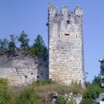 Lebensraum Algyroides nigropunctatus nigropunctatus, Ruinen Dvigrad (westl. Kanfanar), Istarska županija, 16.08.1990, Foto: A.+Ch. Nöllert.