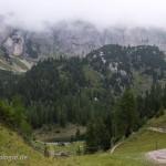 Lebensraum Ichthyosaura alpestris alpestris, Rofangebirge, Brandenberger Alpen, Rofan, Tirol, 15.08.2015, Foto H. Bringsøe