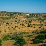 Lebensraum u. a. von Triturus pygmaeus und Pleurodeles walt, Luz, Distrito de Faro, Região do Algarve, 10.07.1996, Foto A.+Ch. Nöllert.