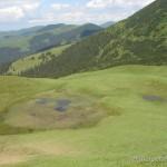 Lebensraum Lissotriton montandoni, 1.585 m ü. NN, Judeƫ Suceava, Bucowina, 18.06.2007, Foto D. Cogâlniceanu.