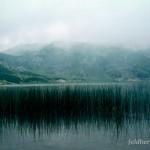Lebensraum Ichthyosaura alpestris cyreni, Lago Ercina, Parque Nacional de los Picos de Europa, Covadonga, Principáu d'Asturies. Im Felsbereich und auf den Rinderweiden entlang des Sees leben u. a. Salamandra salamandra bernardezi, Alytes obstetricans obstetricans und Iberolacerta monticola monticola, 18.07.2004, Foto A.+ Ch. Nöllert.