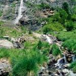 Lebensraum von Rana pyrenaica sowie Calotriton asper, Seitenbach des Río Ara, Valle de Bujaruelo bei Torla (Pyrenäen), Provincia de Huesca, Communidad autónoma Aragón, 19.07.1996, Foto A.+Ch. Nöllert.