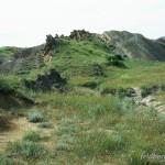 Lebensraum Eremias velox caucasica, Steppe in der Umgebung des Klosters David Garedshi (Transkaukasische Senke), Kachetis Mchare, 20.07.2003, Foto: W. Bischoff.