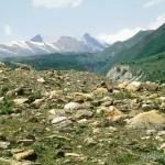 Lebensraum von Darevskia caucasica caucasica, Umgebung von Nagwarebi, ca. 1300 m ü. NN. (Großer Kaukasus), Mzcheta-Mtianetis Mchare, 24.05.2002, Foto: W. Bischoff.
