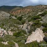 Lebensraum von Lyciasalamandra helverseni, Karpathos, Dodekanisos, 09.04.2006, Foto: B. Trapp (www.bennytrapp.de).