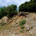 Lebensraum Laudakia stellio daani, Halbinsel Chalkidiki, Makedonía, 04.05.2012, Foto: B. Trapp (www.bennytrapp.de).