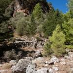 Lebensraum Podarcis cretensis, Samaria-Nationalpark, Lefka Ori, Kriti, 26.09.2013, Foto: S. Teufert.