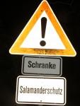 Salamanderschutz durch Straßensperrung, Foto: A. Kwet