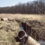 Rückbau von Verrohrung zur Optimierung von Larvengewässern, Foto: R. Podloucky